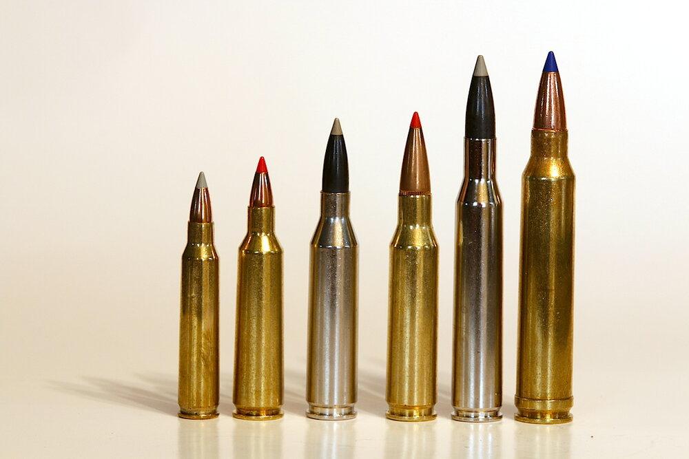 municija za lov srndaca